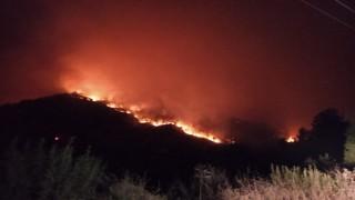 Hatay Kisecik'de yeniden orman yangını